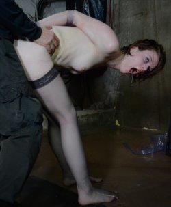 hard porn galleries 1